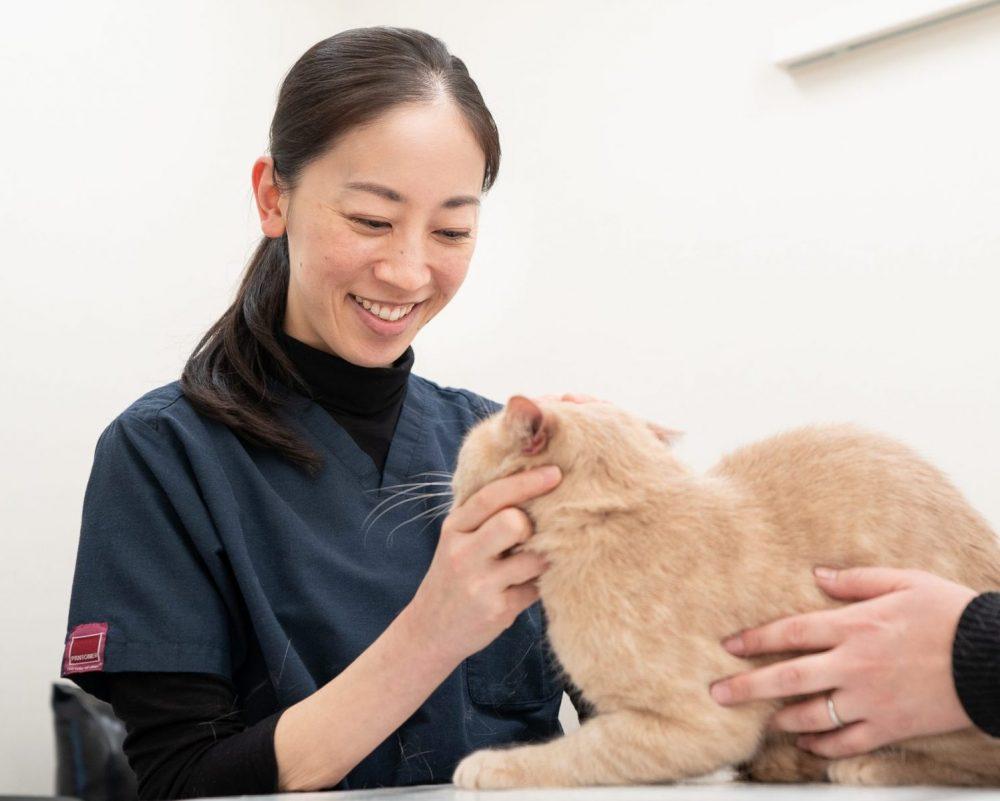 安田 祥恵 八戸市やすだ動物病院