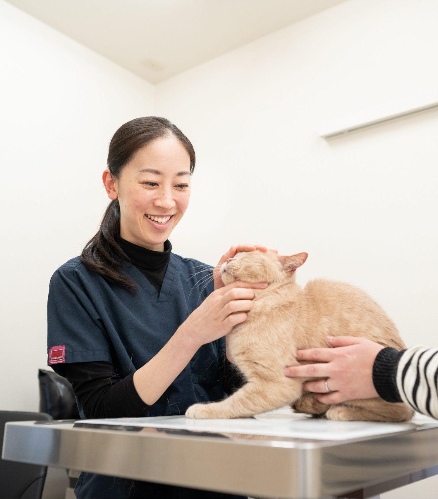安田 祥恵|獣医師・画像診断検定医